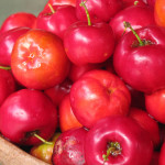 Not an ordinary Cherry – Acerola